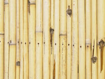 Bamboo fence pattern Royalty Free Stock Photography