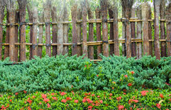 Bamboo fence. Royalty Free Stock Photography