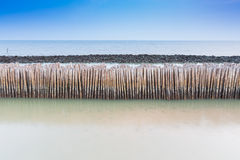 Bamboo fence protect sandbank Royalty Free Stock Photo