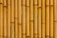 Bamboo fence, rain, wet Royalty Free Stock Image