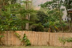 Bamboo fence. In the resort in Thailand Stock Image
