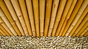 Bamboo fence with stones. Lines of bamboo fence with white stones Stock Photo