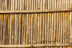 Bamboo fence texture for background Royalty Free Stock Photo