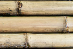Bamboo fence texture background Stock Images