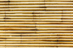 Bamboo fence texture background. Royalty Free Stock Image