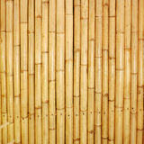 Bamboo fence texture. Brown bamboo fence texture background Royalty Free Stock Image