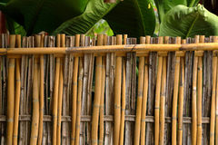Bamboo fence texture natural background Stock Photography