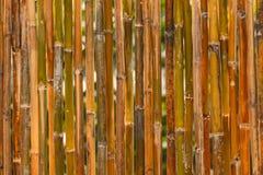 Bamboo fence texture Stock Photo
