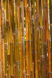 Bamboo fence texture Stock Images