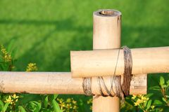 Bamboo fence tied with rope on green Background. stock image
