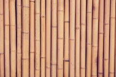 Bamboo fence or wall texture background for interior or exterior. Design Royalty Free Stock Images