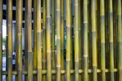 Bamboo fence or wall texture background for interior or exterior Stock Photography