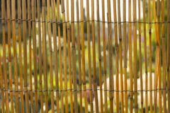 Bamboo fence or wall texture background for interior or exterior design. Stock Photos