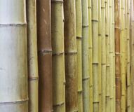 Bamboo fence or wall texture background for interior or exterior design. Royalty Free Stock Photography