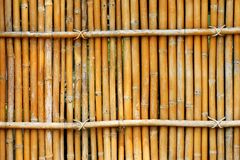 Bamboo fence or wall texture Stock Images