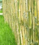 Bamboo fences Stock Image
