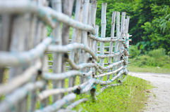 Bamboo fencing Royalty Free Stock Images