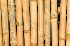 Bamboo fencing Royalty Free Stock Photography