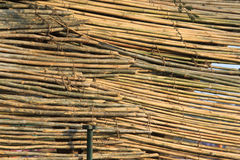 Bamboo fencing Royalty Free Stock Photos