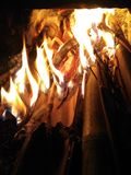 Bamboo fire stock image