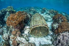 Bamboo Fish Trap Underwater Royalty Free Stock Photography