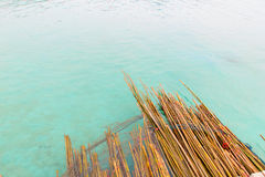 Bamboo floating sea Stock Photo