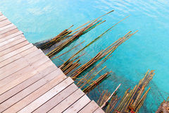 Bamboo floating sea Royalty Free Stock Image
