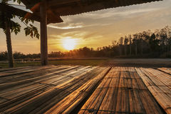 Bamboo flooring with sunset Stock Image