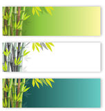 Bamboo flyers set Royalty Free Stock Photo