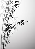 Bamboo in foggy a smoke vector illustration