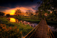 Bamboo Footbridge Royalty Free Stock Images