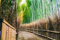 Bamboo forest at Arashiyama. Kyoto, Japan stock image