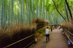 Bamboo forest in Arashiyama of Kyoto ,Japan. Royalty Free Stock Photo