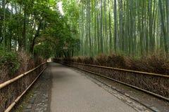 Bamboo forest in Arashiyama of Kyoto Stock Photo