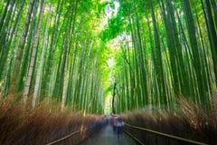 Bamboo forest of Arashiyama Stock Photos