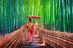 Bamboo Forest. Asian woman wearing japanese traditional kimono at Bamboo Forest in Kyoto, Japan.  royalty free stock images