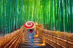 Bamboo Forest. Asian woman wearing japanese traditional kimono at Bamboo Forest in Kyoto, Japan. stock photos