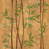 Bamboo forest background - seamless background - wood texture Stock Photos