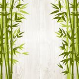 Bamboo forest card Royalty Free Stock Photography