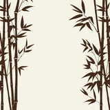 Bamboo forest card Stock Photos