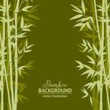 Bamboo forest card Stock Photos