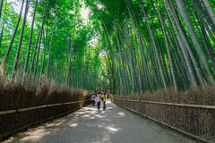 Arashiyama bamboo grove. The famous bamboo footpath at Arashiyama Kyoto Japan Stock Photos