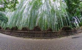 Bamboo forest path of Arashiyama. Kyoto, Japan Royalty Free Stock Images