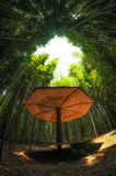 Bamboo forest. A small pavilion in a bamboo forest Royalty Free Stock Photos