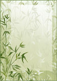 Bamboo forest vector frame. Oriental green bamboo trees wallpaper vector illustration