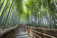 Bamboo Forest Walkway. Bamboo forest walkway near Adashinonenbutsuji Temple, Kyoto. Japan Stock Photo