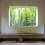 Bamboo forest. Through the window Stock Photography