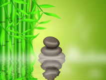 Bamboo Forest  with Zen Pebbles Background Stock Image