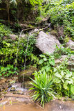 Bamboo fountain catches dripping water, countryside in thai Royalty Free Stock Photo