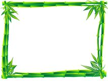 Bamboo frame Stock Images
